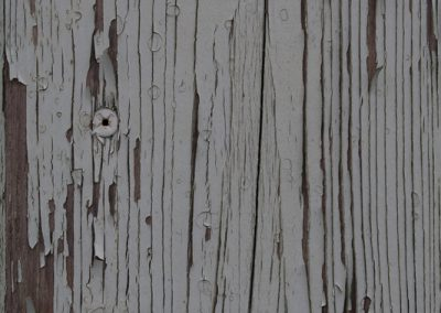 Holz_Flae-che_0101_1_1_texture